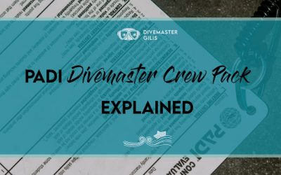 Everything you need to know about PADI Divemaster Crew Pack