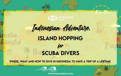 Indonesian island hopping for scuba divers. Guide on where and how to have a dive trip of a lifetime.