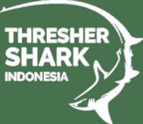 Tresher Shark Indonesia